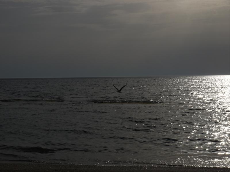 Funtanamare Beach