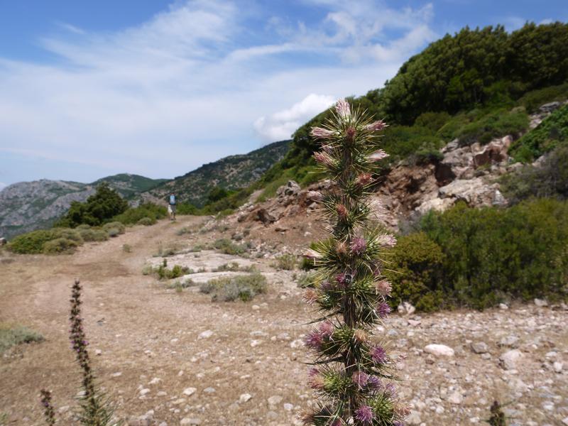 Trekking in Iglesiente